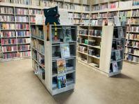 Místní knihovna Kostice