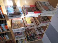 Ústřední knihovna pro českou menšinu